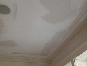 painters that repair water damage in nyc