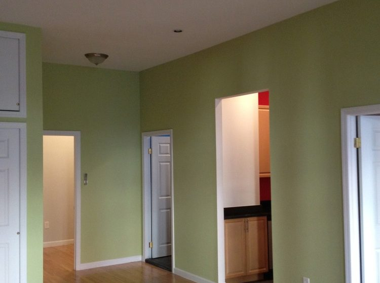 apartment painting lower manhattan nyc
